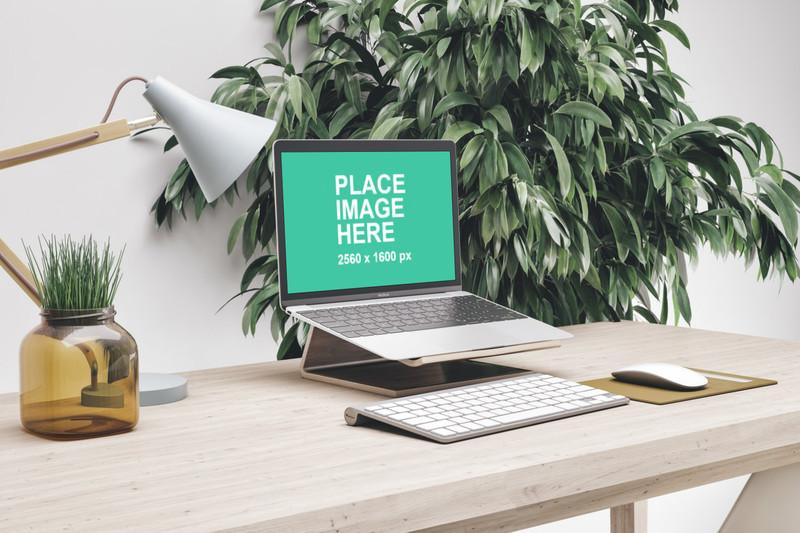 MacBook in working setup
