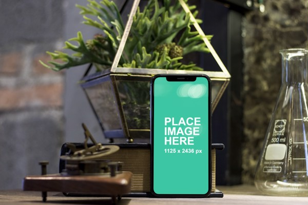 iPhone X with plant