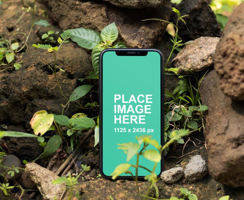 iPhone X in nature