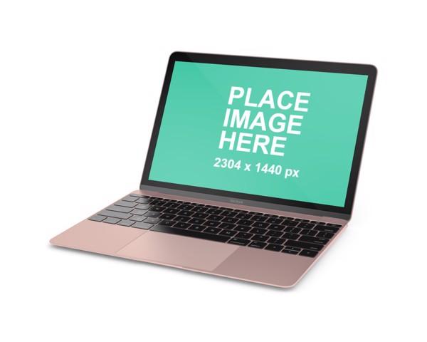 Left faced Rose Gold MacBook
