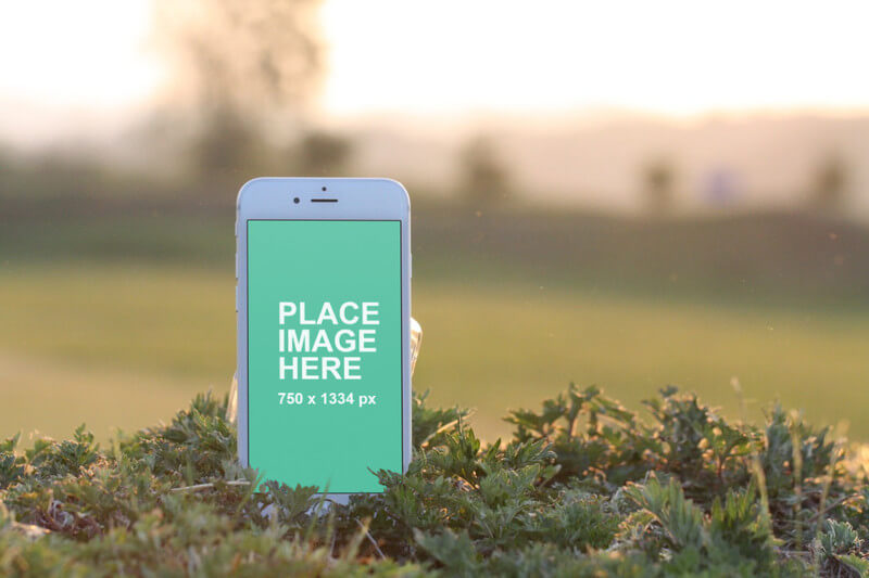 White iPhone standing in grass